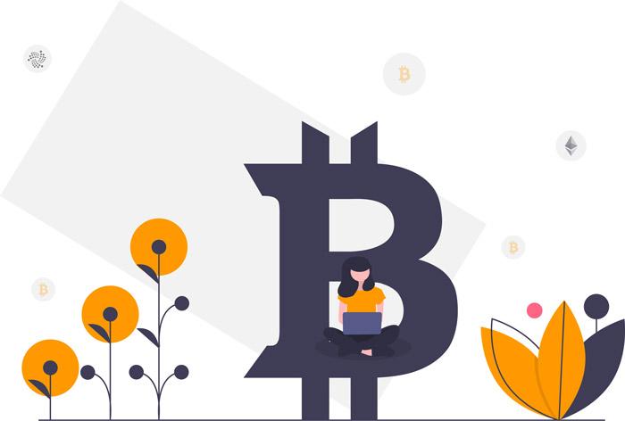 Bitcoin Ethereum investieren Illustration